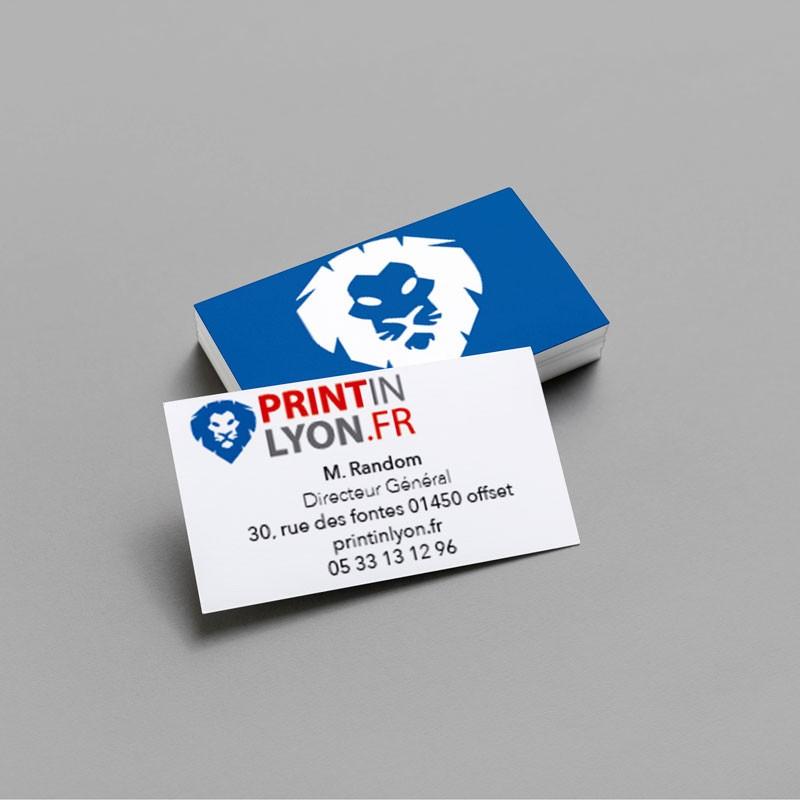cartes de visite standard 350g demi-mat quadri printinlyon